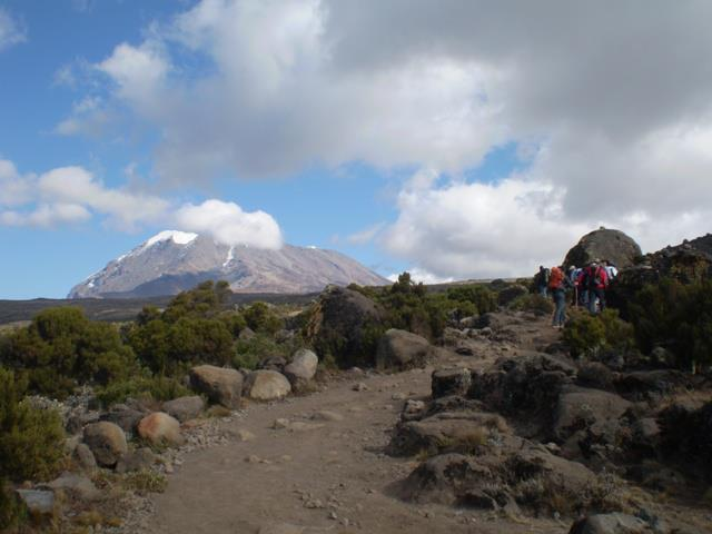 Kilimanjaro 2008.